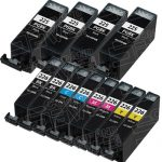(With Chip) New Compatible Canon PGI225 & CLI226 (Set of 12 Pack, 4 PGI225 Pigment Black, 2 each of CLI226 BK/C/M/Y ) Inkjet Cartridges for Canon Pixma Printers